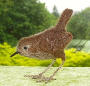 Bird, house wren