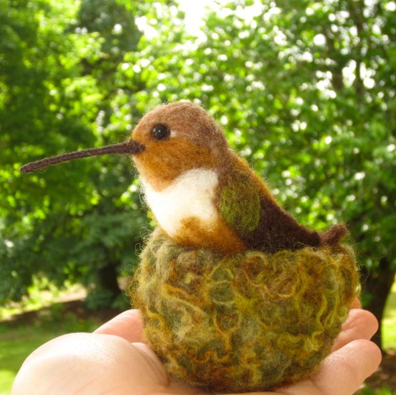 Hummingbird in mossy nest