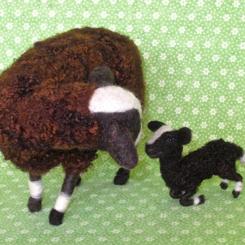 Sheep, Balwen Welsh ewe & lamb