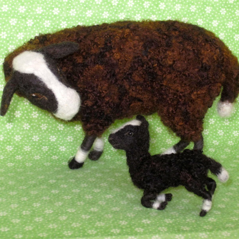 Sheep, Balwen Welsh Mtn