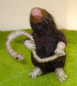 Mole, earthworm