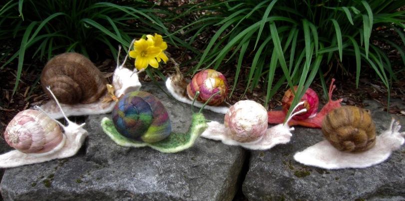 Garden snails all