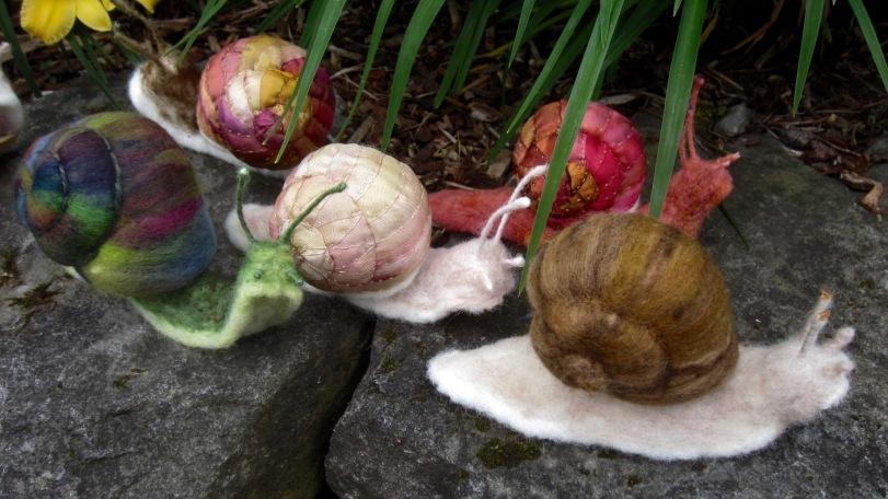 Garden snails red